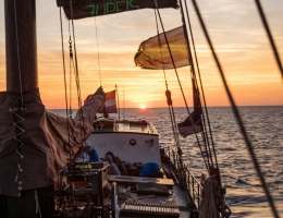 segeln-2017_1000x-03